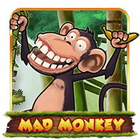Mad Monkey H5